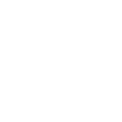 RS21 logo di colore bianco.